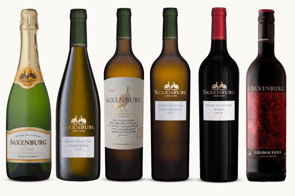 Saxenburg - Wine_ish Case